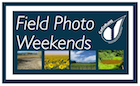 Field Photo Weekends